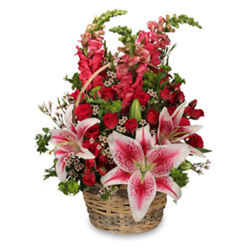Gorgeous and colorful basket design will be at instant hit at the office or home.<br/><br/>
