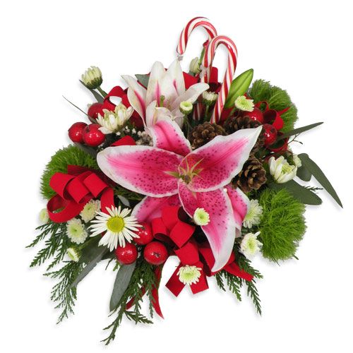 When you want to share the Christmas spirit without blowing the budget, we have the perfect gift for you. Who needs another tie or scarf when this fresh holiday decoration creates smiles all around.<br/><br/>